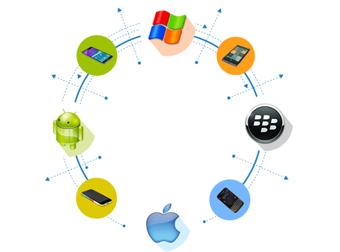 Customized Web Application Development Company Delhi, India