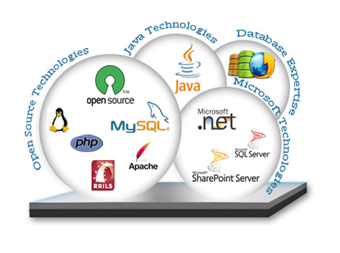 Web Development Company in India, Delhi